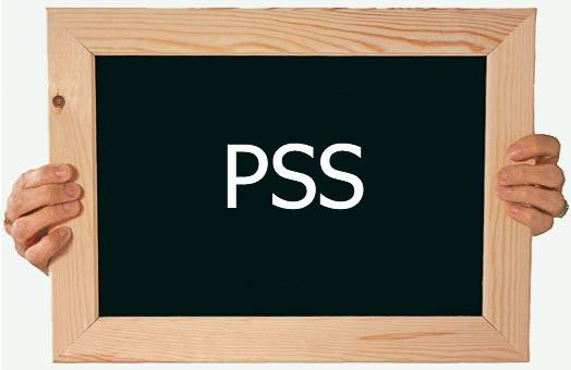 Marcio-Pacheco-PSS-professores
