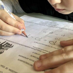 Confira a íntegra do PL que institui o ensino domiciliar no Paraná
